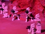 Shooting Lego Troopers