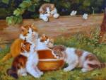 Kittens & Butterflies