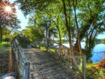 Bridge at Lake
