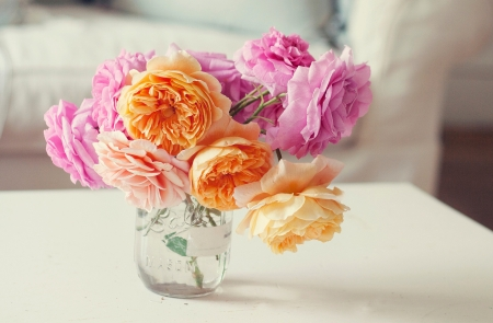 Just Simple - orange, simple, soft, pik, roses, drift