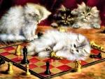 Les Chats Al Echiquier - Cats F