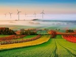windmills in colorful fields on a foggy morning