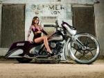 Purple1-Custom Bagger