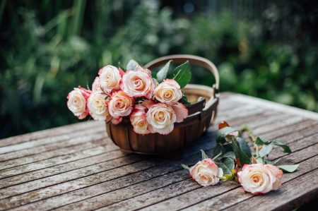 With Love ♥ - photography, lovely, rose, basket, summer, flowers, beautiful, roses