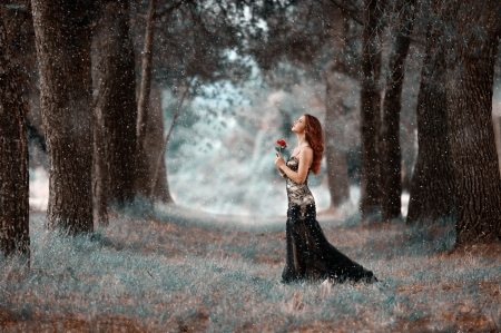 Cold Hearted ♥ - forest, rose, beautiful, woman, photography, girl, snow, snowflakes, flower, beauty