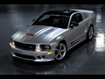 SMS Twenty Fifth Anniversary Mustang