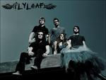flyleaf and her band