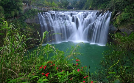 Shifen Waterfall, Taiwan - taiwan, waterfall, flowers, nature
