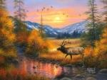 Autumn River Stroll