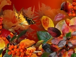 Enchanted Autumn Butterfly
