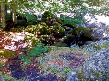 mountain Vitocha - rocks, mountains, forests, scenery, rivers