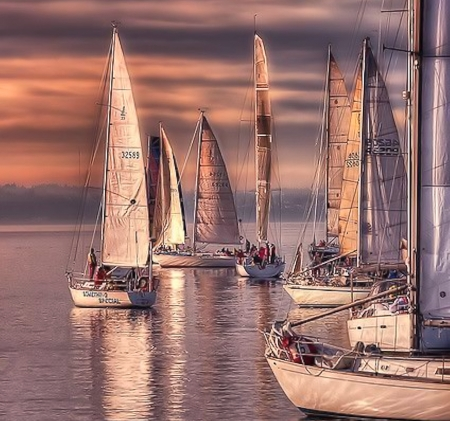 Sailboats - Water, sailing, Boats, Sky