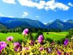 Tatras