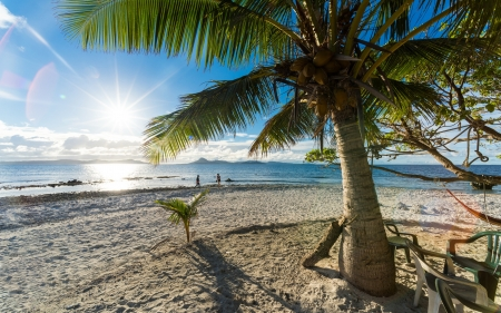 Tropical Summer - holidays, beautiful, sunset, palm trees, sea, beach, sand, paradise, summer, island, tropical