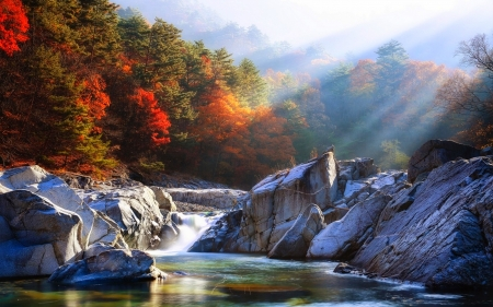 Autumn Sunrise Rivers Amp Nature Background Wallpapers On