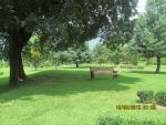 Botinical Garden