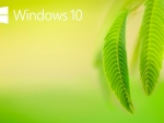 windows 10 natural HD