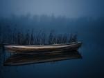 solitary rowboat on a lake at night