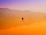 fishermen on a foggy lake