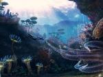 'Underwater paradise'.....