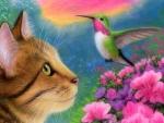 Tabby Cat & Hummingbird