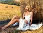 Hiding In The Hay