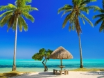 ☆ A Beautiful Tropical Day in Bora Bora ☆