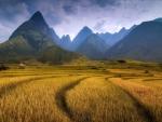 Sharp mountains