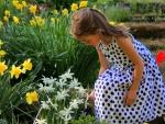 Wonder of Spring