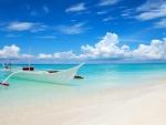 Paradise Boat