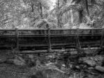 wonderful bridge over stream in a jungle hdr