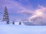 morning winter landscape