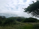 Sea mist on Tennyson Down