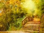 Lovely Autumn Day