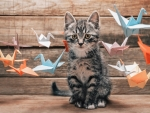 Kitten and paper birds