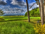 lovely overlook of fields in germany hdr