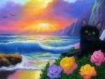 Ocean Black Cat