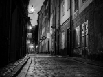 cobblestone street in stockholm in BW