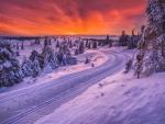 toboggan road in scandinavia hdr