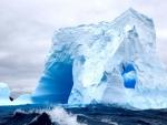 seagulls circling an antarctica iceberg
