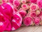 *Roses*
