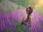 Lavender Dreams ♥