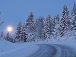 moon in winter