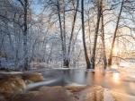 spectacular winter sunrise