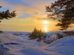 sunset lake in winter