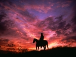 silhouette of cowboy on a horse at sunset