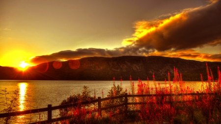 GORGEOUS DUSK - flowers, nature, sunset, Loch Ness, sky, lake