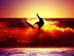 surfing on red waves at sunset