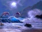 Dolphin Kingdom