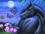 Moonlight Black Horse